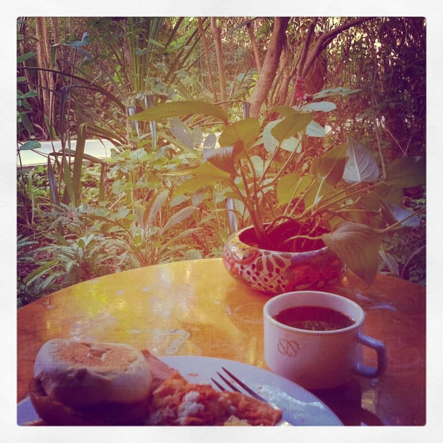 [Image: Image by @mjeppsen - Breakfast in the jungle before an early dive... on Propic]