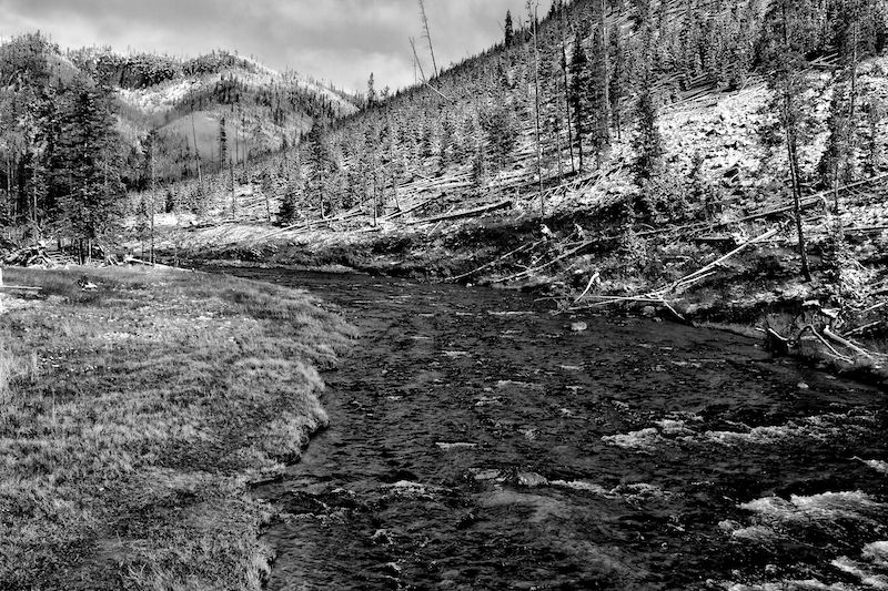 [Image: Yellowstone River, BW by @DanielPDunn - the Yellowstone River, in YNP, pretty wild place #tasra365 on Propic]