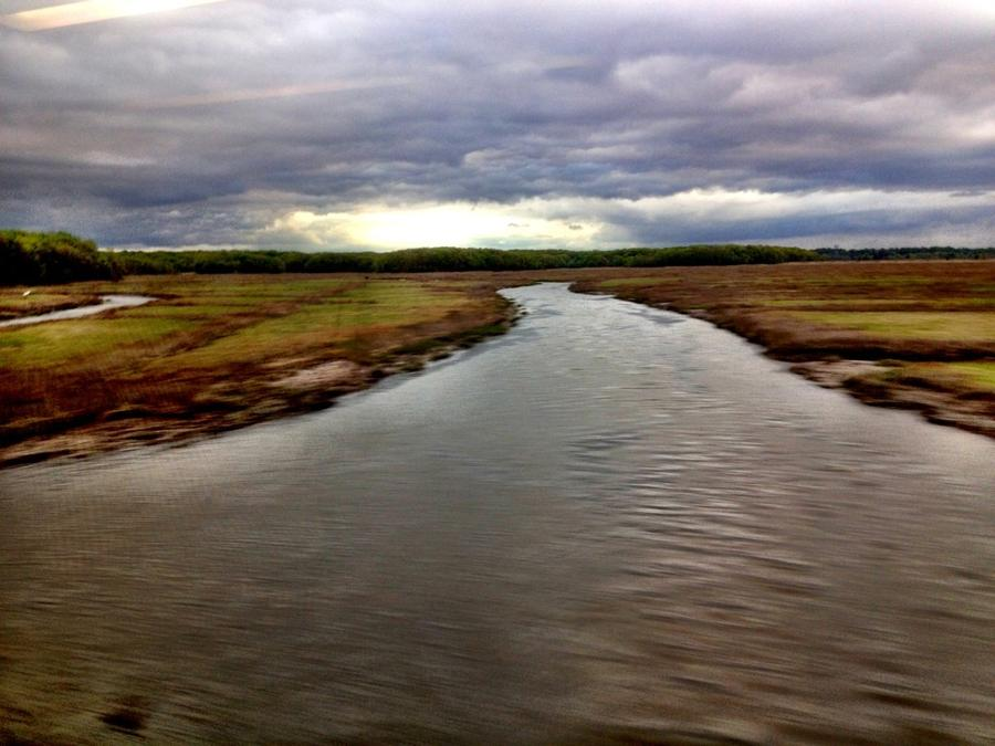 [Image: Image by @LordOfVisions - Speeding past the wetlands. on Propic]