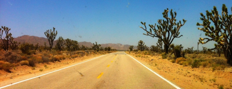 [Image: Photo by @drkanab - Rollin' through the Mojave with @mindrelic and @erichinesphotos on Propic]