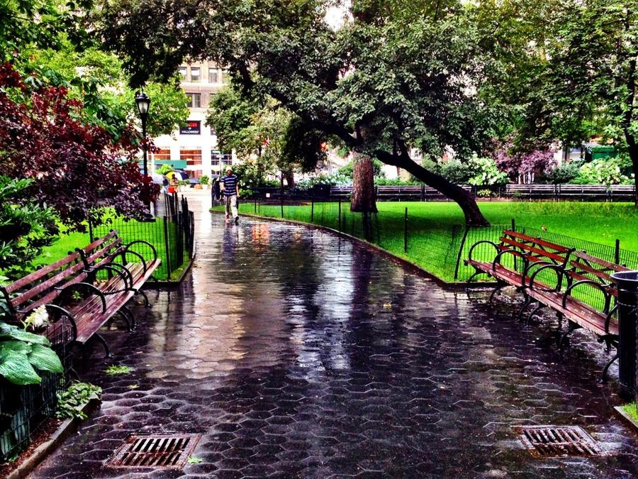 [Image: Facing Park Benches by @LordOfVisions - Facing park benches after an afternoon shower. Madison Square Park, NYC. on Propic]