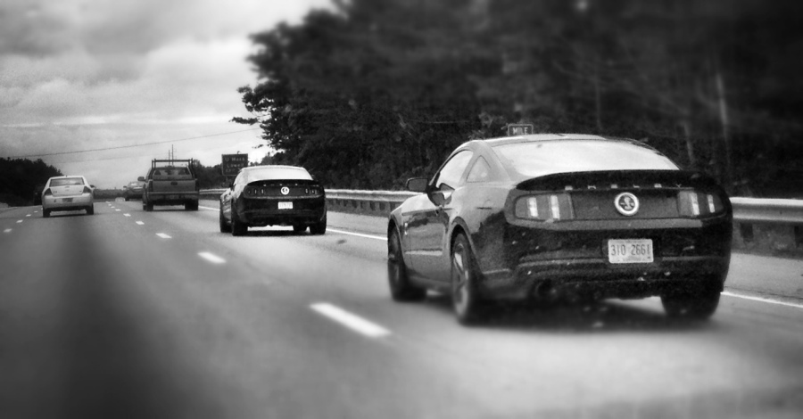 [Image: Photo by @MNS1974 - Dueling Shelby Mustangs on Propic]