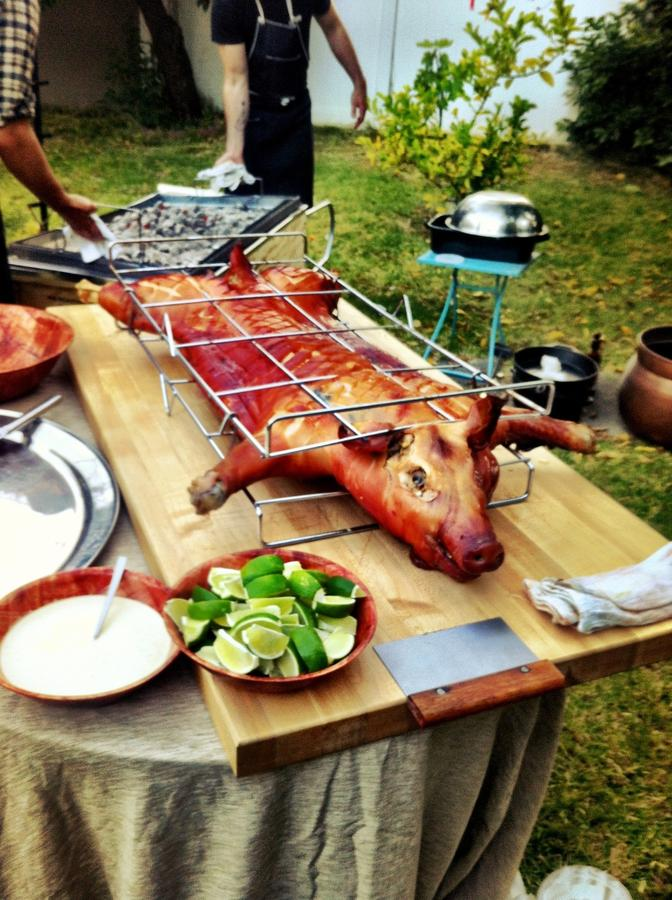 [Image: Image by @AlexBuono - Oh that?  Just a whole roasted pig at a backyard BBQ... on Propic]
