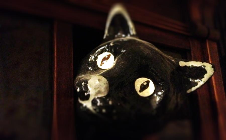 [Image: Peeking Cat by @LordOfVisions - I wonder what this cat is looking at? Must be interesting, scary perhaps? on Propic]