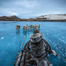 [Image: Sledding - Greenland by scientifantastic]