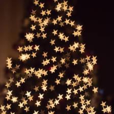 [Image: Christmas Tree]