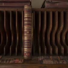 [Image: Records Shelf by kurtleenettleton]