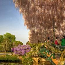 [Image: ashikaga-flower-park-japan-15 by deloprojet]