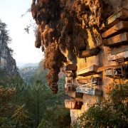 [Image: SFW012 Sagada Caves Philippines 001 by SeanFWhite]